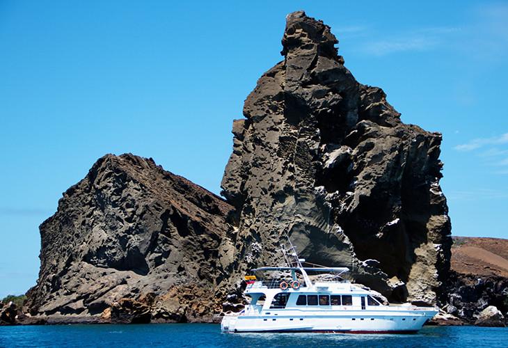 Sea-Lion_137546425081