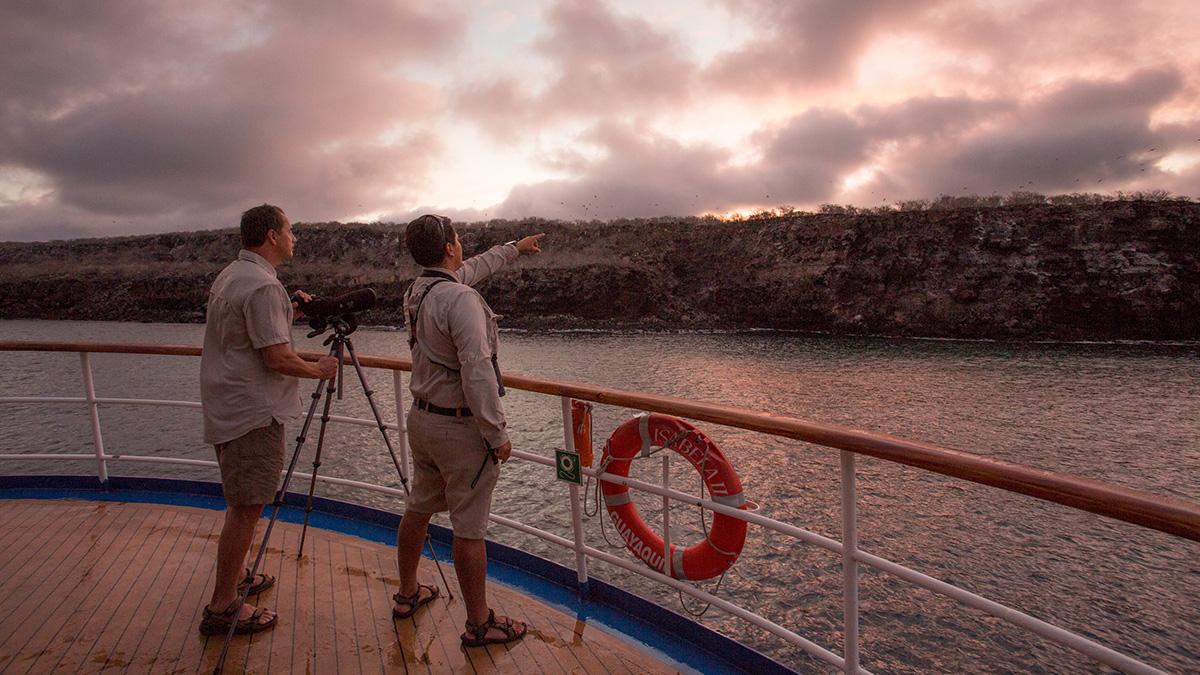 Yacht Isabela II – Activities – Wildlife observations