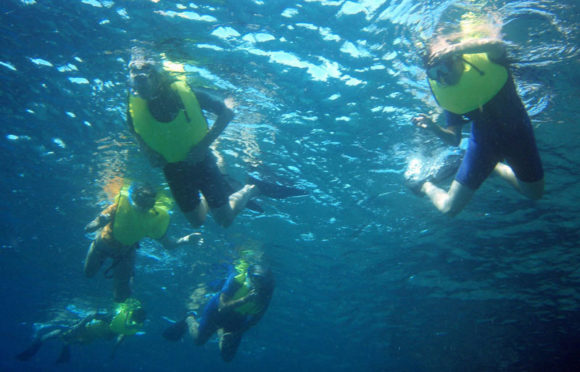 Yate La Pinta – Actividades – Snorkeling