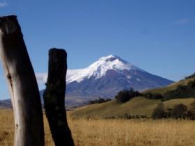 Cotopaxi y la Avenida de los Volcanes