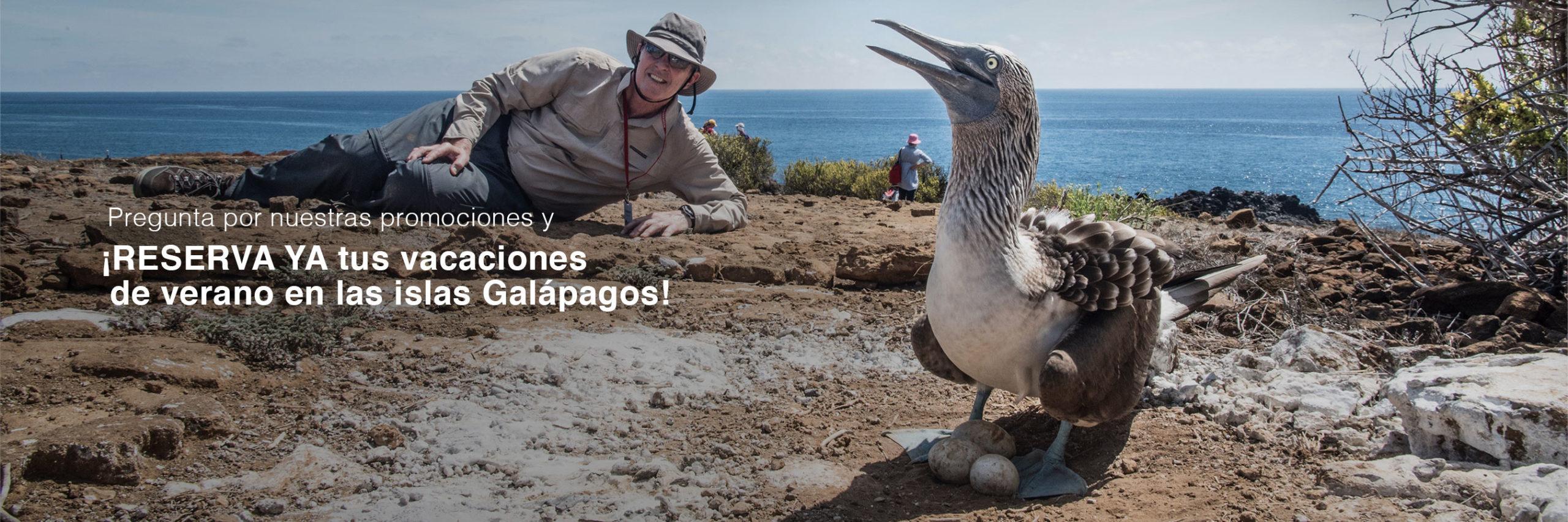 promo especial verano islas galapagos cruceros
